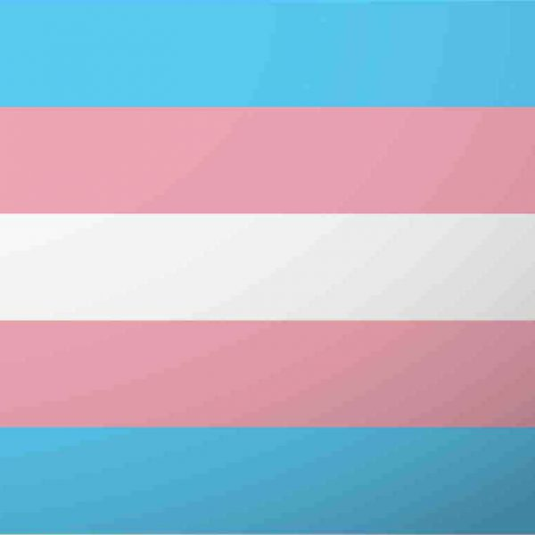 You Can't Erase Trans People: 4 Ways You Can Help Now