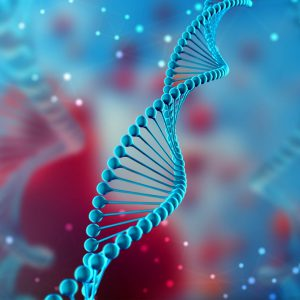 Debunking the Gay Gene
