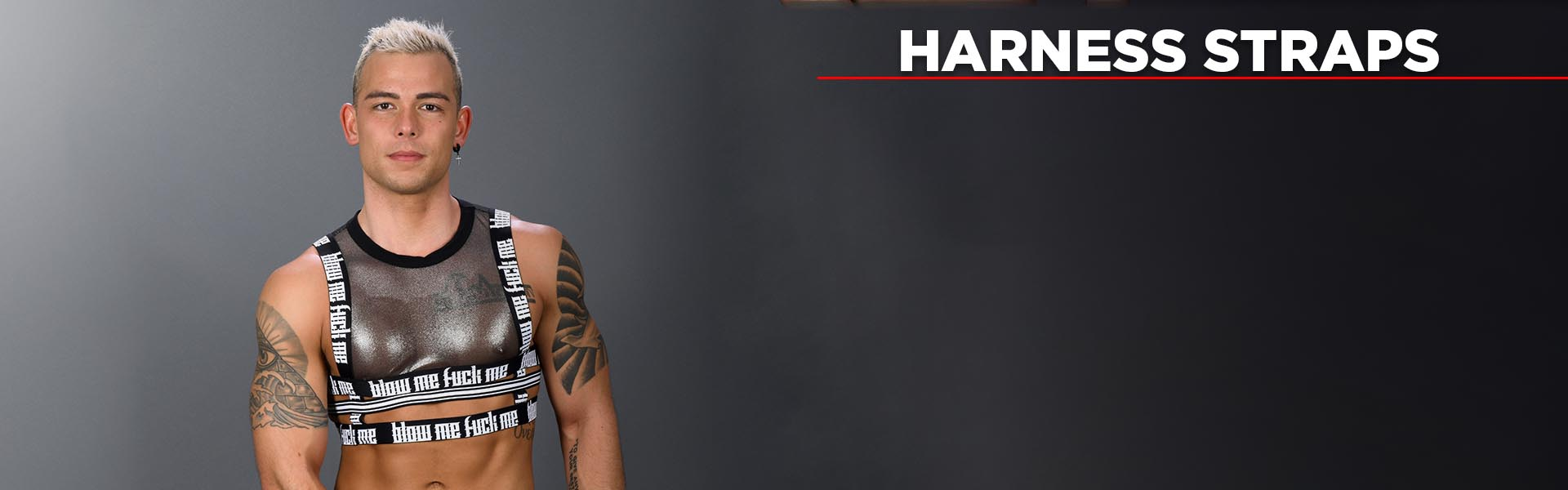 Harness Straps