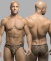 Cheetah Bikini Thumbnail 1