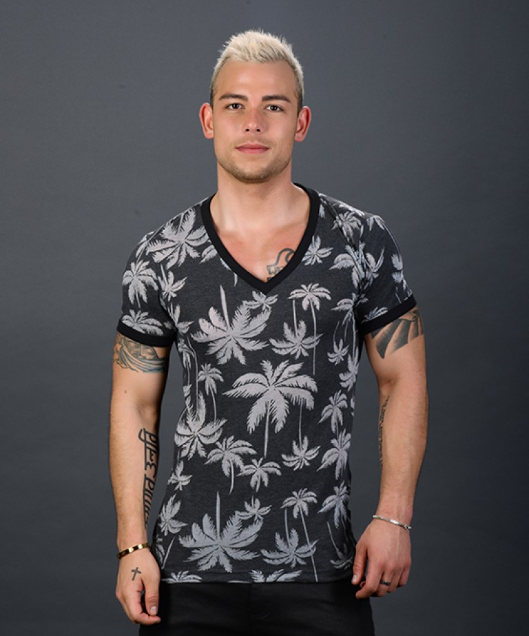 Palm Burnout Deep V-Neck Tee
