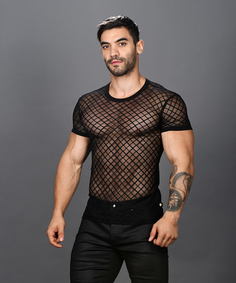 Lattice Lace Sheer Tee Shirt