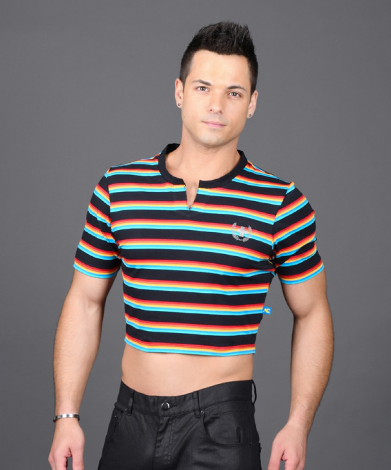 California Stripe Crop Laurel Tee