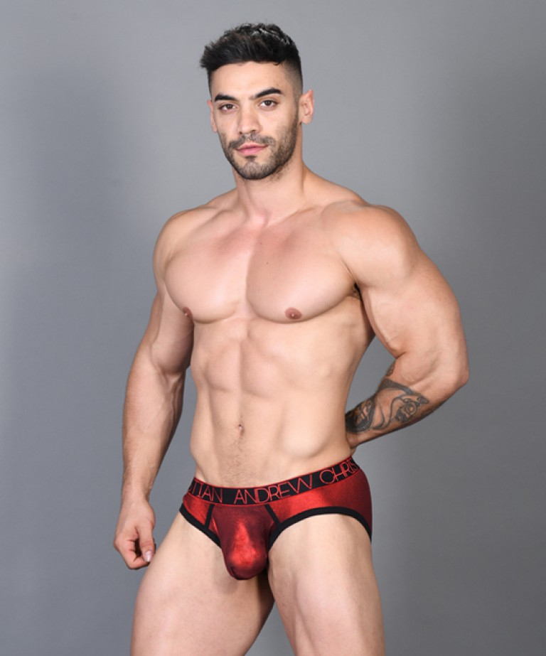 Hotness Metallic Brief w/ Almost Naked