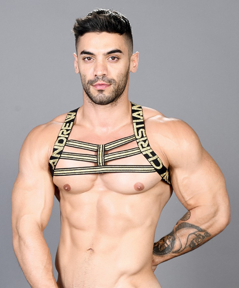 Bondage Harness