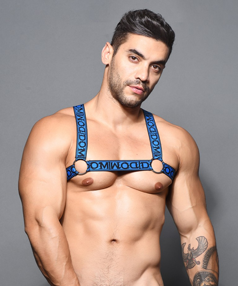 Dom Ring Harness