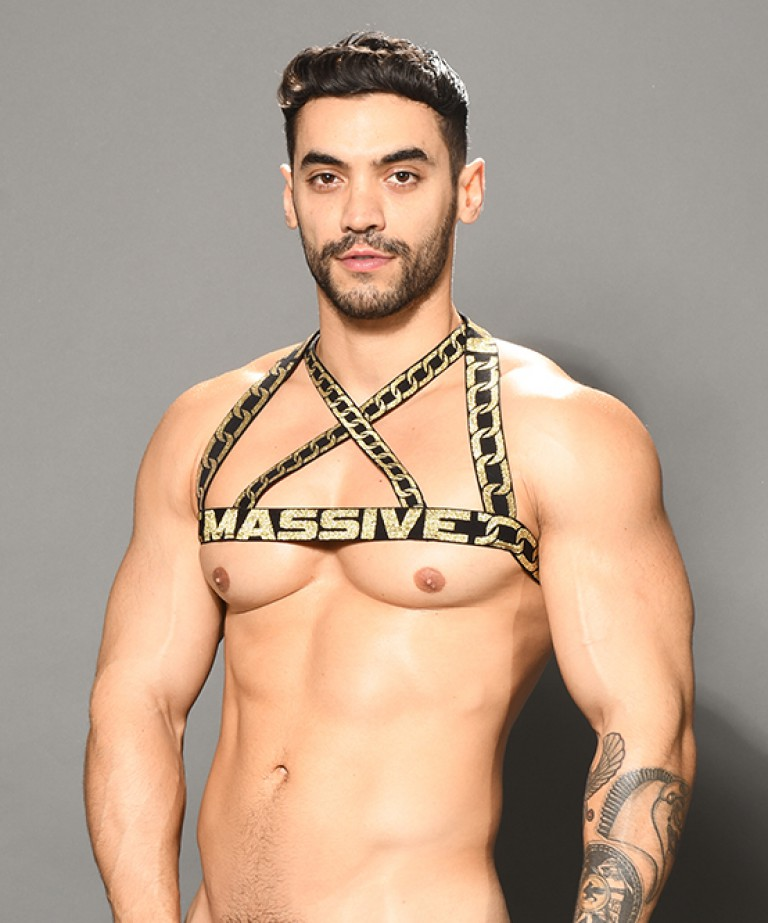MASSIVE Chain Harness
