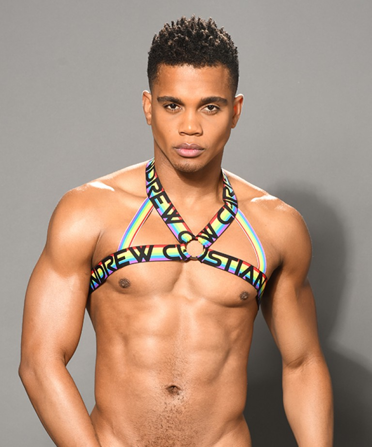 Pride Ring Harness