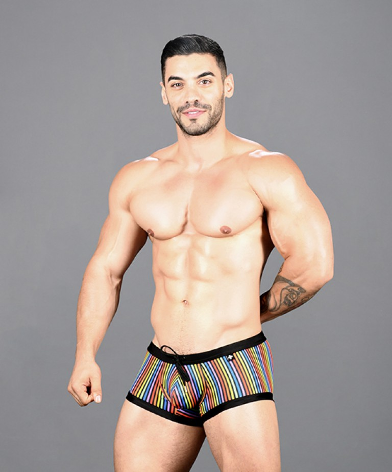 Disco Pride Trunk
