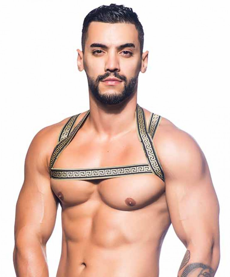 MASSIVE Gladiator Harness