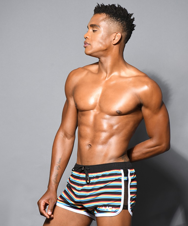 California Stripe Net Swim Shorts