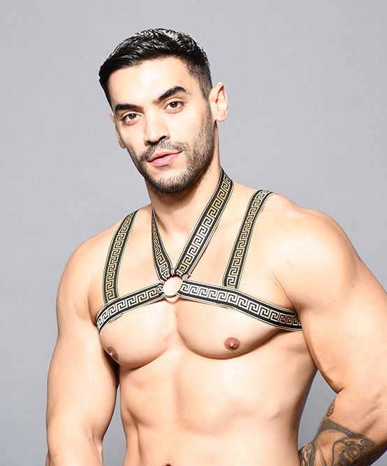 MASSIVE Ring Harness