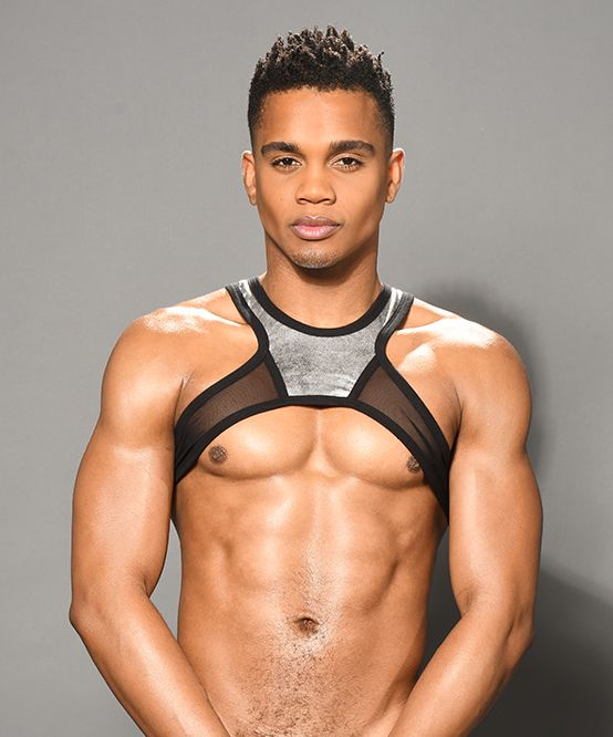 Brilliance Mesh Harness